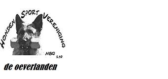 Logo HSV